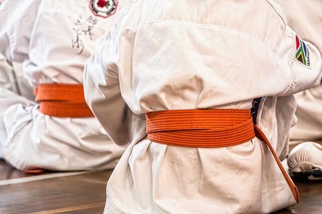 Karatepuvut